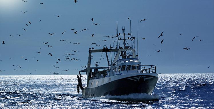 Pesqueros